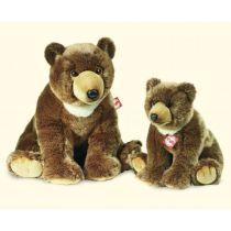 Brunbjörnar